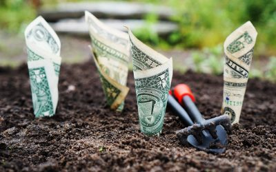 Susan Wilklow's First Key To Building Wealth