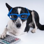 Susan Wilklow's Under-Utilized Pet Tax Deductions